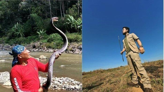 Peristiwa Heru Gundul Belah Kulit Ular King Kobra Garaga, Ini Sederet Kisah Bersama Panji Petualang