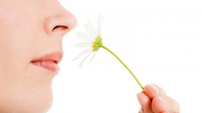 Ini Cara Penanganan Gangguan Penciuman karena Covid-19