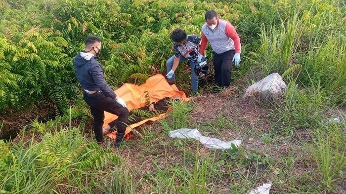 Geger, Mayat Pria Dewasa di Semak Jalan Lingkar Luar Palangkaraya, Diduga Korban Kecelakaan Tunggal