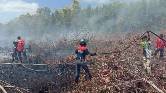 Karhutla di Palangkaraya, Polisi Selidiki Kebakaran Lahan Gambut di Kawasan Bandara Tjilik Riwut