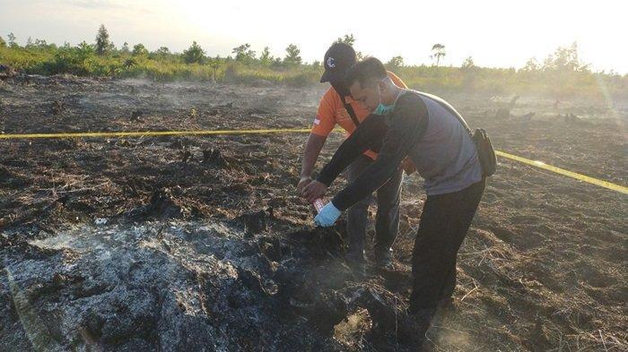 Karhutla Kalteng, Polisi Usut Kebakaran Lahan Lima Hektare Sabangau Palangkaraya, TKP Dipolice Line
