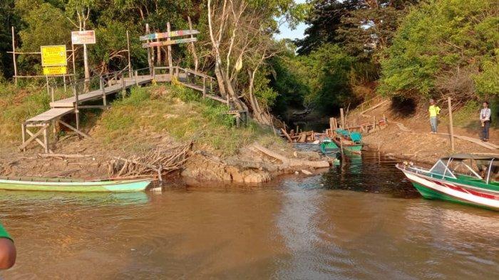 Menelusuri Objek Wisata dan Hutan Konservasi Taman Nasional Sebangau, Luasnya Mencapai 568.700 Ha