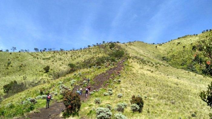 Pendaki Gunung Merbabu Wajib Booking Online dan Tunjukkan Bukti Bebas Covid-19