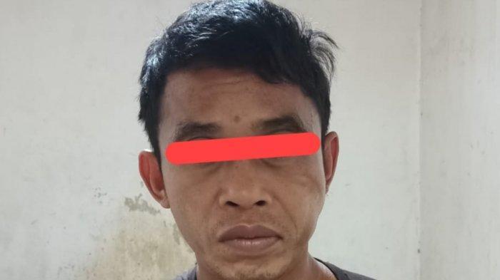 Kriminalitas Kalteng, Mengamuk Bawa Sajam, Warga Kotawaringin Timur Diamankan Polisi