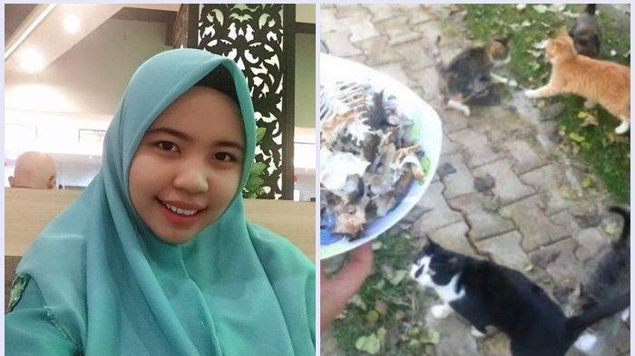 Suka Beri Makan Kucing di jalan, Jok Motor Mahasiswi Ini Berisi Makanan Kucing