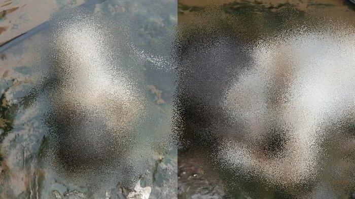 Mayat Bayi Perempuan Ditemukan Sungai Manggasang HST,Tubuhnya Membiru