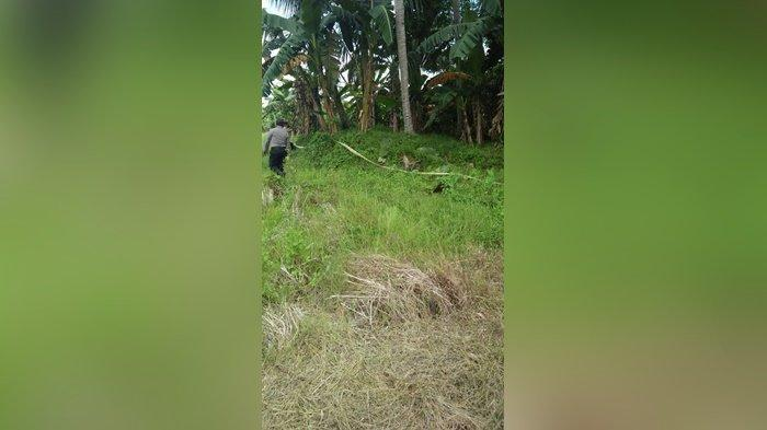 Heboh Mayat di Semak Belukar di Kecamatan Batang Alai Utara Kalsel