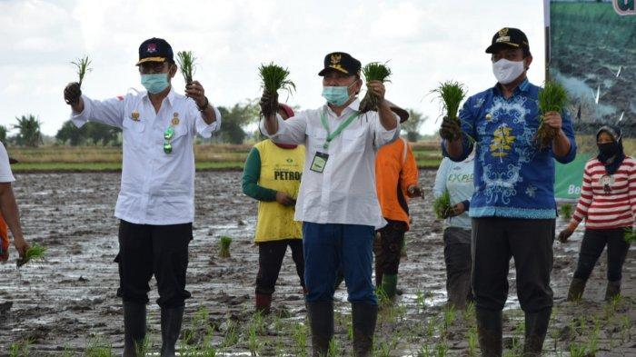 Kalteng Siap Jadi Super Prioritas Ketahanan Pangan Nasional, Presiden Utus Mentan ke Eks PLG Kalteng