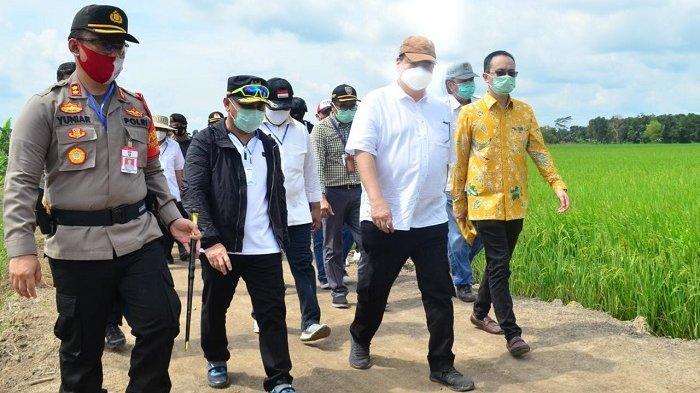 Pusat Siapkan Rp 6 Triliun untuk Food Estate Eks PLG Kapuas dan Pulangpisau