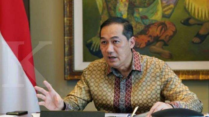 Promosi Jokowi Soal Bipang Ambawang Blunder, Mendag Muhammad Lutfi Tuai Kritikan