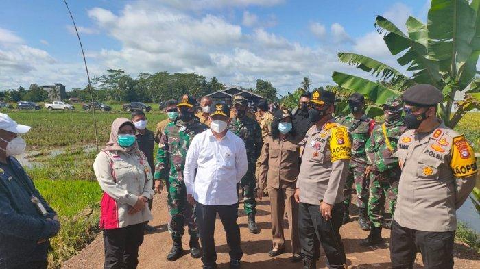 Februari 2021, Presiden Jokowi Dijadwalkan Akan Panen Padi di Lokasi Food Etate Kalteng