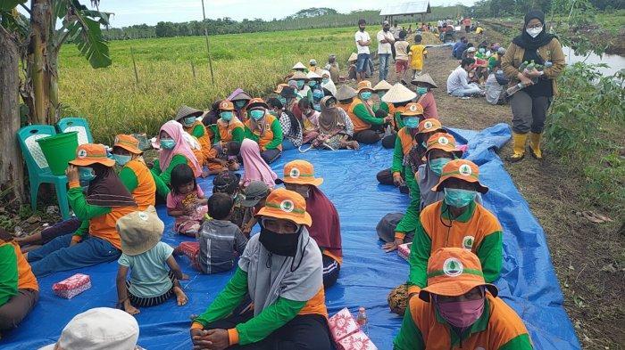 Menteri Pertanian Syahrul Yasin Limpo Tertarik Peternakan Sapi di Sukamara Kalteng