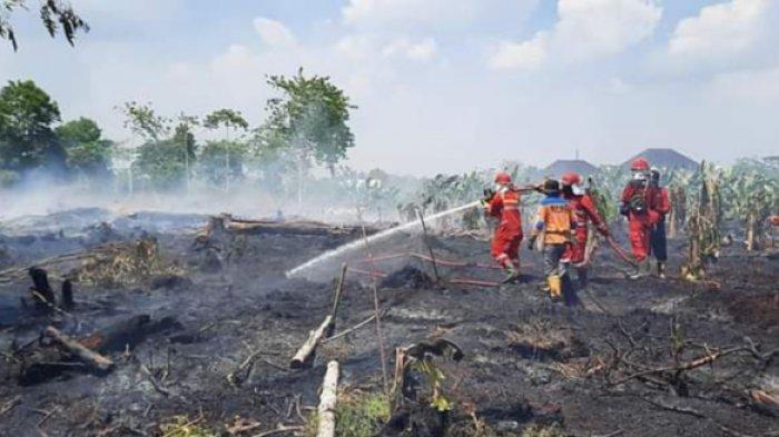 Kebakaran Lahan Kalteng, Padamkan Kebakaran Lahan, Petugas Dibekali Mobil Pemburu Api