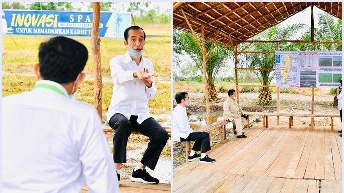 Tinjau Food Estate di Dadahup Kapuas, Jokowi dan Para Menteri Bahas Ini di Gubuk