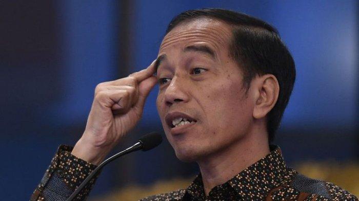 BP Batam Dibubarkan, Jokowi Inginkan Batam Seperti ini