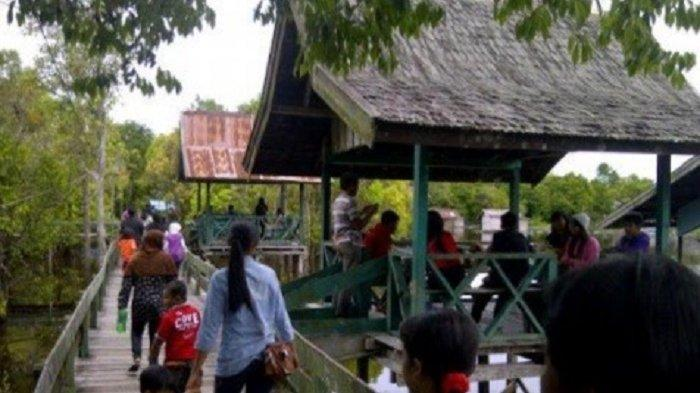 KaltengPedia: Di Danau Tahai Kota Palangkaraya Kalteng Ini Kamu Bisa Lihat Orangutan, Pokoknya Seru!