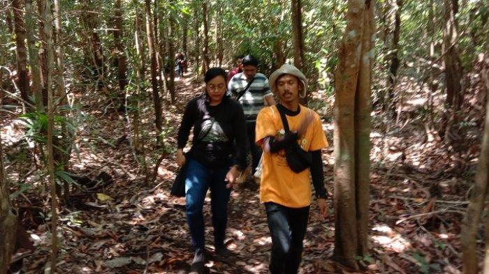 Serunya Berpetualang Masuk Dalam Hutan Konservasi Taman Nasional Sebangau, Masih Alami & Terjaga