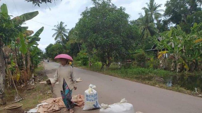 Belajar Daring Kalsel, Jaringan Internet Lelet, Belajar Daring di Kurau Tala Tak Lancar