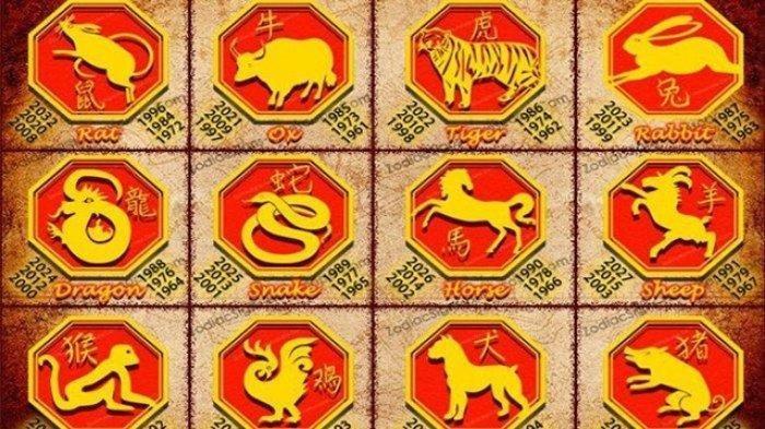 Ramalan Shio Hari Ini Selasa 28 September 2021, Naga Hubungi Teman Lama, Macan Coba Cara Baru