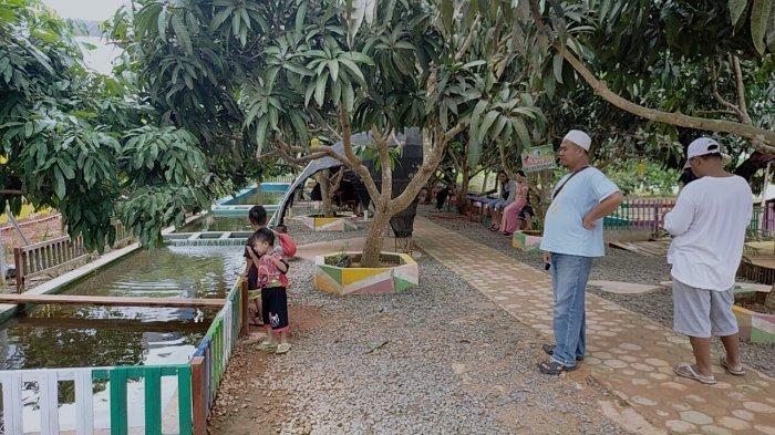 Travel: Kebun Buah Lintang Batang Kotim, Upaya Kurangi Ketergantungan Pasokan Buah dari Jawa