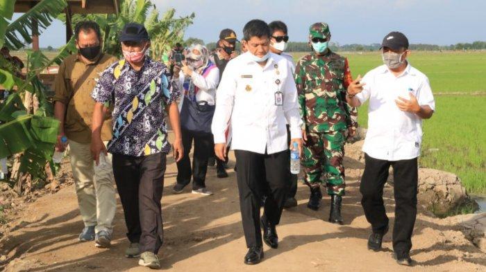 Tim Watannas RI Pantau Lokasi Food Estate di Kalimantan Tengah, Dapatkan Fakta ini