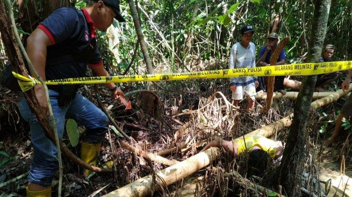 Pencari Kayu Tewas di Hutan Sambil Memeluk Kayu Tebangan, Polres Pulpis Selidiki Penyebab Kematian