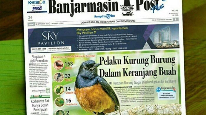 Ratusan Burung Dimasukkan ke Keranjang Buah, Ternyata . . .