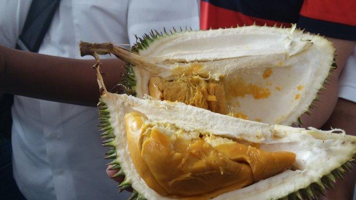 Dulu Harganya Disamakan Durian Biasa, Ternyata Otak Udang Jenis Durian 'Langka'