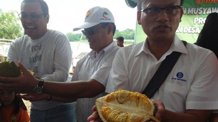 Durian Otak Udang Kasongan Didukung Jadi Brand Kalteng ke Tingkat Nasional