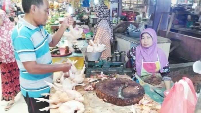 RPK Jual Daging Ayam di Atas Ketentuan, Ini Kata TPID Kalteng