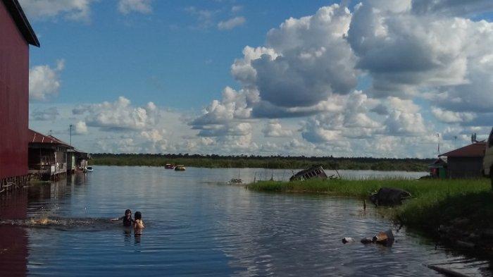 Keunikan Air Hitam di Sebangau Bikin Indri Tertarik Datang dari Yogyakarta