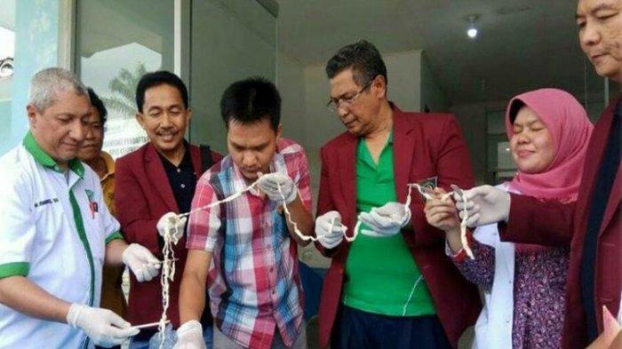 Cacing Pita 10,5 Meter Ditemukan di Tubuh Pasien, Dinkes Mengaku Belum Punya Obatnya