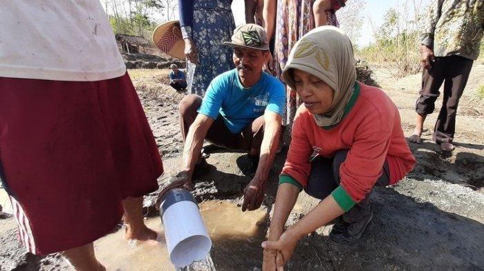 Heboh Mata Air Muncul di Tengah Lahan Gersang, Tak Berhenti Mengalir Sampai Basahi Persawahan