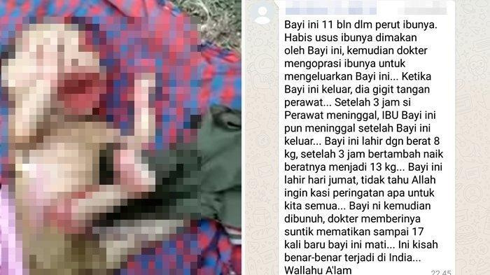 Viral Video Bayi Aneh di WhatsApp, Fakta Sebenarnya Terungkap, Ternyata Hoaks!