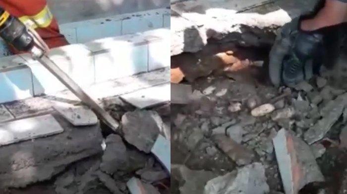 Detik-detik Pembongkaran Sarang Kobra di Makam, Ular Kerap Masuk Rumah Warga
