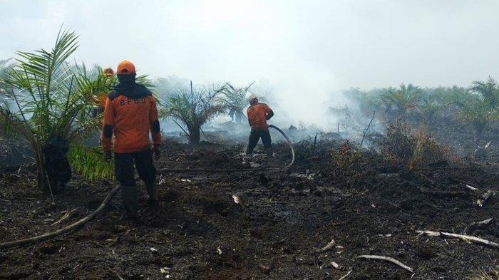 Perjuangan Personel BPBD Kapuas Padamkan Api, Nekat Tidur di Dekat Api saat Terjadi Karhutla