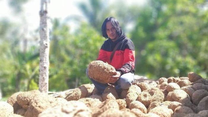 Dari Pemulung Kini Jadi Pengusaha, Paidi Berangkatkan Umroh Orang Sekampung