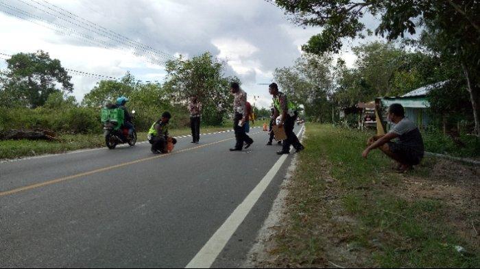 Polresta Palangkaraya Gelar Olah TKP Laka Lantas Truk vs Bus Yessoe di Jalan Trans Kalimantan