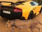 anak-orang-kaya-arab_20170711_100024.jpg