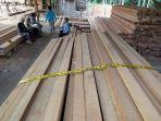 barang-bukti-ilegal-logging-yang-diamankan-polres-katingan_20180903_183002.jpg