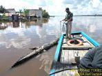buaya-berukuran-tiga-meter-penghuni-sungai-mentaya-kabupaten-kotim-ditemukan-membusuk.jpg