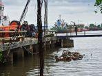 lokasi-truk-terguling-di-pelabuhan-trisakti-minggu-1012021-asfas.jpg