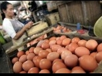 pedagang-telur.jpg