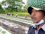 petani-margo-mulyo-kelurahan-pasir-putih-kecamatan-mentawa-baru-ketapang-sampit-kalteng.jpg