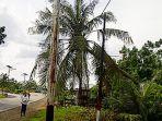 pohon-kelapa-tumbang-menimpa-jaringan-telkom_20170328_101905.jpg