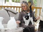 tony-perempuan-55-tahun-itu-merawat-120-kucing_20150625_102436.jpg
