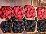 tribun-kalteng-aneka-buah-berry_20170505_110104.jpg