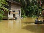 tribun-kalteng-banjir-kapuas-hulu_20170716_205501.jpg