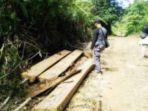 tribun-kalteng-kayu-ilegal_20170825_092419.jpg
