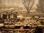 tribun-kalteng-kebakaran-hutan-di-california.jpg